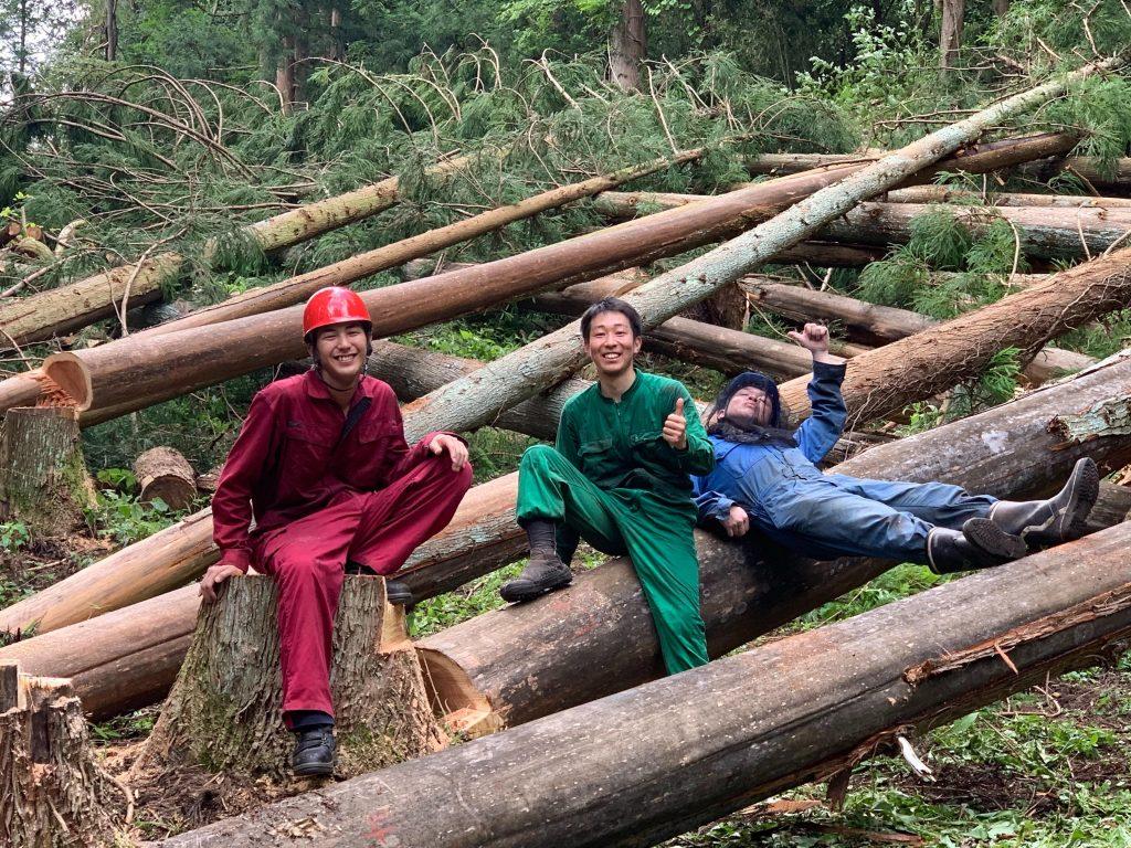 建物に必要な150本の杉の立木を伐倒し終えたときの写真